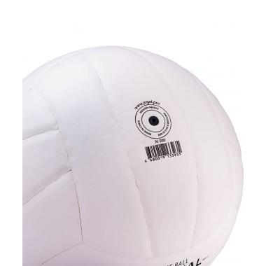 Мяч волейбольный JV-500